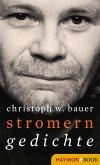 Stromern (eBook, ePUB)