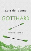 Gotthard (eBook, ePUB)