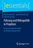 Führung und Mikropolitik in Projekten