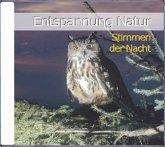 Entspannung Natur - Stimmen der Nacht, 1 Audio-CD