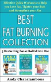 Best Fat Burning Collection - Lose Fat, Tighten Your Butt And Strengthen Your Abs (Fit Expert Series) (eBook, ePUB)