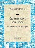 Quinze jours au Sinaï (eBook, ePUB)