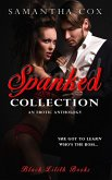 Spanked Collection (eBook, ePUB)