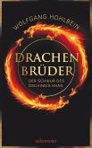 Drachenbrüder (eBook, ePUB)