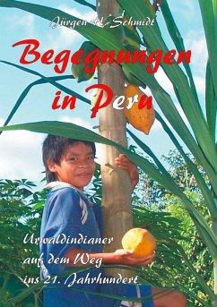 Begegnungen in Peru (eBook, ePUB)