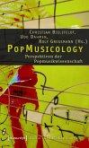 PopMusicology (eBook, PDF)