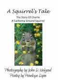 A Squirrel's tale, The Story Of Charlie, A California Ground Squirrel