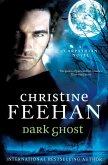 Dark Ghost (eBook, ePUB)