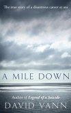 A Mile Down (eBook, ePUB)