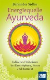 Energiequelle Ayurveda (eBook, PDF)