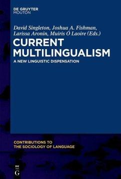 Current Multilingualism (eBook, PDF)