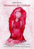 Meisterin der Geburt (eBook, ePUB)