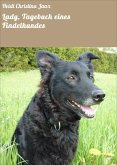 Lady, Tagebuch eines Findelhundes (eBook, ePUB)