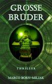 Grosse Brüder (eBook, ePUB)