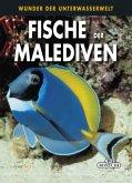 Fische der Malediven