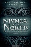 Die Söhne des Wanderers / Hammer of the North Bd.1