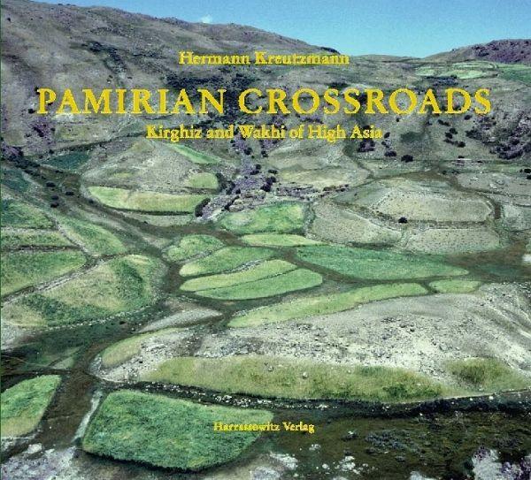 pakistan at the crossroads pdf