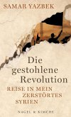 Die gestohlene Revolution (eBook, ePUB)