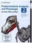 Praxisorientierte Anatomie und Physiologie von Hund, Katze und Pferd. Tl.2, 1 DVD