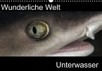Wunderliche Welt Unterwasser (Wandkalender 2016 DIN A3 quer)