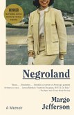 Negroland (eBook, ePUB)