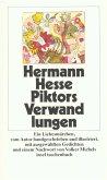 Piktors Verwandlungen (eBook, ePUB)