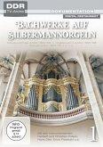 Bachwerke auf Silbermann-Orgeln, Vol. 1