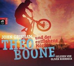 Theo Boone und der entflohene Mörder / Theo Boone Bd.5 - Grisham, John