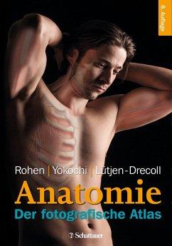 Anatomie des Menschen (eBook, PDF) - Rohen, Johannes W.; Yokochi, Chihiro; Lütjen-Drecoll, Elke; Yokochi, Chihiro M.D.