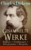 Gesammelte Werke: Romane + Erzählungen + Reiseberichte + Biografie (eBook, ePUB)