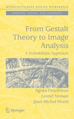 From Gestalt Theory to Image Analysis (eBook, PDF) - Desolneux, Agnès; Moisan, Lionel; Morel, Jean-Michel