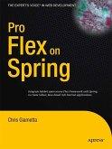 Pro Flex on Spring (eBook, PDF)
