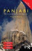 Colloquial Panjabi (eBook, PDF)