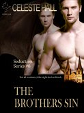 The Brothers Sin: Seduction Series, Book 6 (eBook, ePUB)