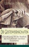 Die Geisteswissenschaften - Grundlegung für das Studium der Gesellschaft und ihrer Geschichte (eBook, ePUB)