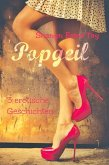 Popgeil (eBook, ePUB)