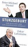 Sturzgeburt (eBook, ePUB)