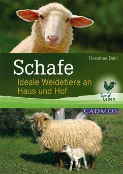 Schafe (eBook, ePUB) - Dahl, Dorothee