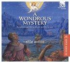 A Wondrous Mystery