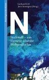 N (eBook, PDF)