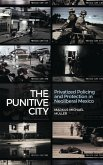 The Punitive City: Privatized Policing and Protection in Neoliberal Mexico