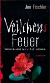 Veilchens Feuer / Valerie Mauser Bd.2