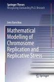Mathematical Modelling of Chromosome Replication and Replicative Stress (eBook, PDF)