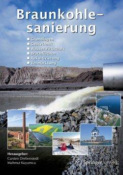Braunkohlesanierung (eBook, PDF)