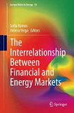 The Interrelationship Between Financial and Energy Markets (eBook, PDF)