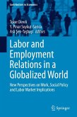 Labor and Employment Relations in a Globalized World (eBook, PDF)
