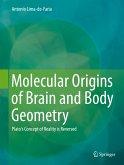 Molecular Origins of Brain and Body Geometry (eBook, PDF)
