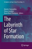 The Labyrinth of Star Formation (eBook, PDF)