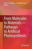 From Molecules to Materials (eBook, PDF)