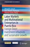 Labor Markets and Multinational Enterprises in Puerto Rico (eBook, PDF)